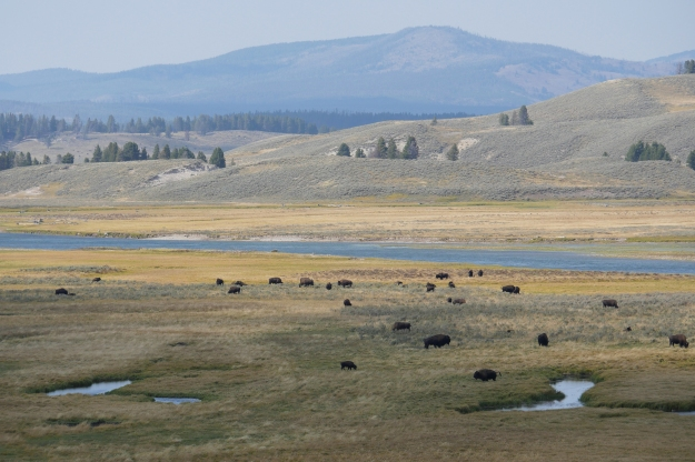 Beautiful spacious skies over Yellowstone National Park.