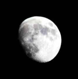 Moon1 6Dc11